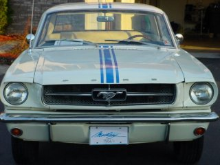 1964 1/2 mustang pace car