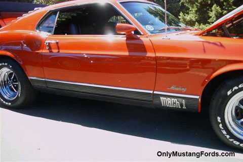 1970 mach one rocker trim