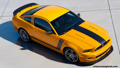 2013 Boss 302 side stripes