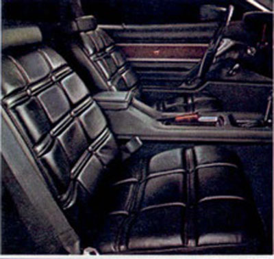 1976 ford mustang deluxe interior