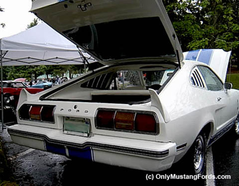 1977 ford mustang cobra tail lights