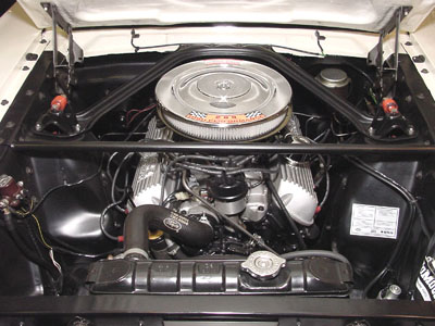 1965 shelby engine