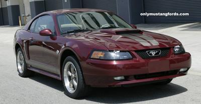 Alabama Mustang Clubs - 2004 Mustang GT