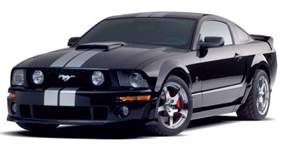 Saleen Mustang - White Stripes