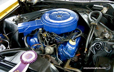 1973 302 v8 engine compartment