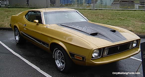 1973 mustang mach 1 fastback